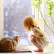 Girl and Cat looking out of the window — Stockfoto
