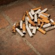 Cigarette Butts — Photo