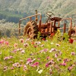 Stock Photo: Rusty Tractor in Wildflower Field