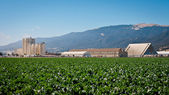 Agricultural Processing Facility — Stock Photo