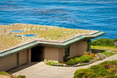 緑の屋根 — ストック写真