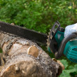 Chainsaw — Stock Photo #12403664