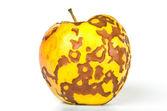 Bad apple — Stock Photo