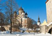 St.alexander něvské katedrály — Stock fotografie