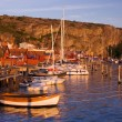 Beutiful village by the swedish west coast — Stock Photo #12274809