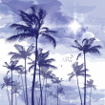 Постер, плакат: Palm trees at sunset