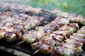 Pinchos de pollo — Foto de Stock
