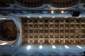 Detaljer för pisa katedralen taket — Stockfoto