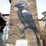 Katowice Street Art Festival — Stock Photo
