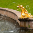 Foto Stock: Fountains of Petergof, Saint Petersburg, Russia