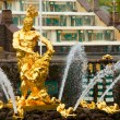 Famous Samson and the Lion fountain in Peterhof Grand Cascade, St. Petersburg, Russia. — Stockfoto