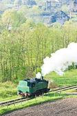 Parní lokomotiva, durdevik, Bosna a hercegovina