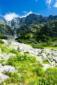 Kleine kalten tal, vysoke tatry (hohe tatra), slowakei