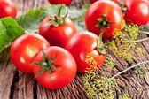 Tomaten, gekocht mit Kräutern für die Erhaltung