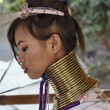 Постер, плакат: Thailand Chang Mai Karen Long Neck hill tribe village Kayan Lahwi Long Neck woman in traditional costumes Women put brass rings on their neck when they are 5 or 6 years old and increase the numb