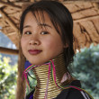 Постер, плакат: Thailand Chiang Mai Karen Long Neck hill tribe village Kayan Lahwi Long Neck woman in traditional costumes Women put brass rings on their neck when they are 5 or 6 years old