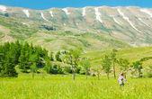 Happy healthy women over mountain landscape