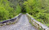 Római híd bemeneti, poo de cabrales