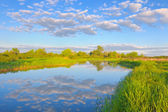 Rural landscape with Narew river and Stratocumulus clouds.