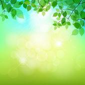Fresh green leaves on natural background vector illustration