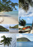 Montage of a tropical beach