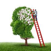 Cervello e memoria visita medica con un medico su una scala rossa arrampicata alta per ispezionare una testa umana a forma di albero come simbolo della demenza malattia prevenzione cura ricerca e su sfondo bianco