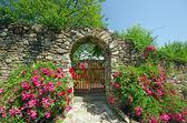 Staré zdi s květinami