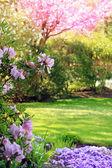 Park v jarní