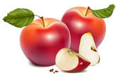 Vector Ripe red apples with green leaves