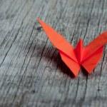Постер, плакат: Origami butterfly