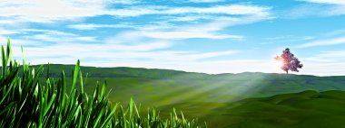 Sunny day on the hills. Natural backgrounds