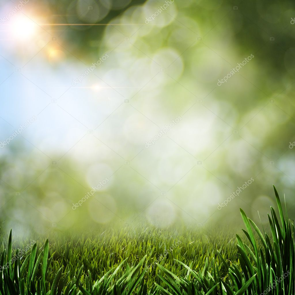 Abstract summer backgrounds with green grass and sun beam