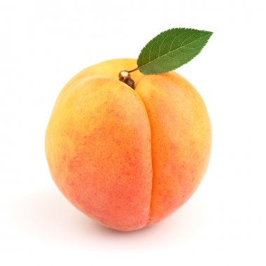 Sweet ripe apricot with leaves