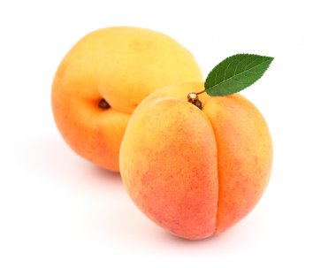 Sweet apricot with leaf
