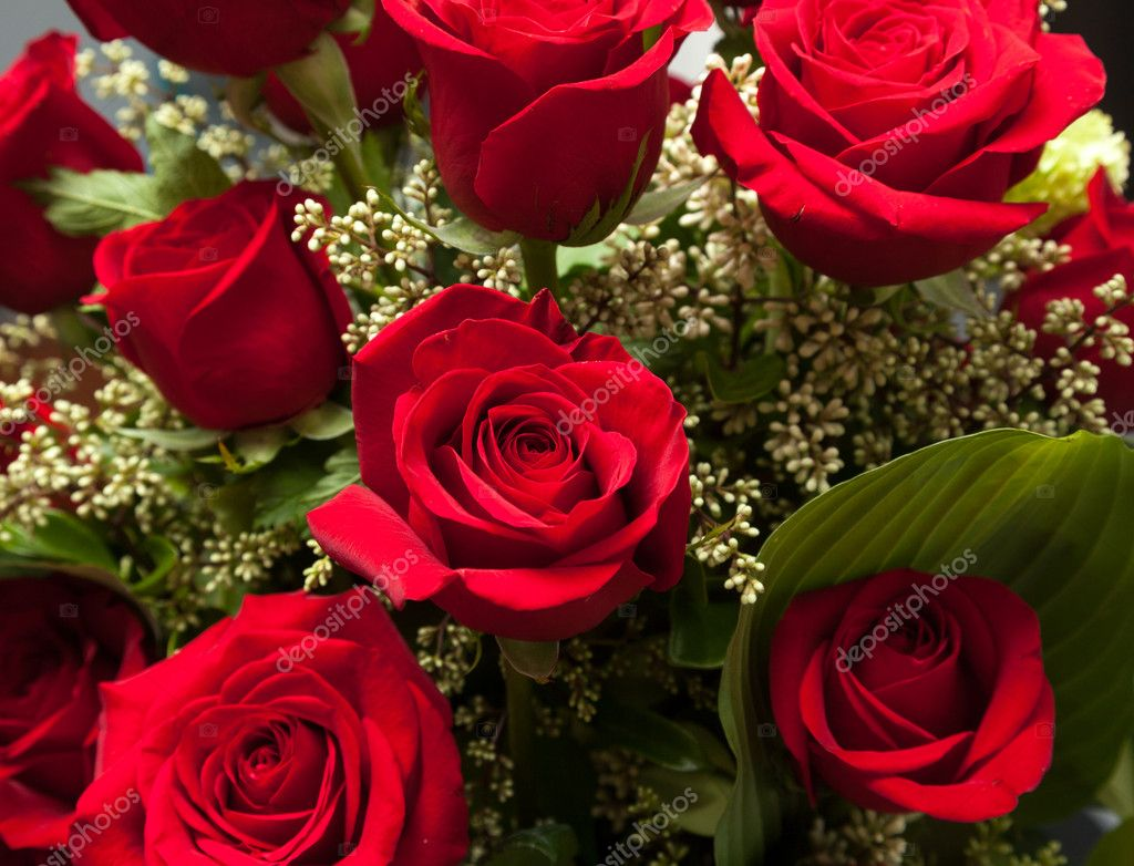 Close up of red rose bouquet with roses