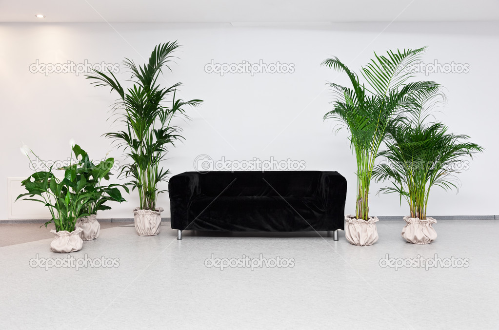 Zwarte bank in moderne minimalisme interieur met groene planten