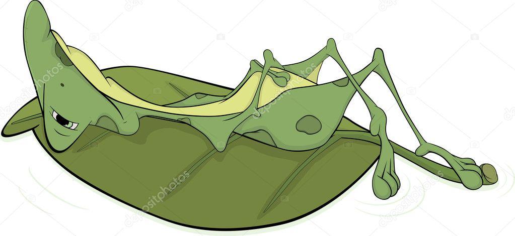 Grenouille verte de gros dessin anim image vectorielle liusaart 11986976 - Dessin de grenouille verte ...