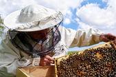 práce včelaře