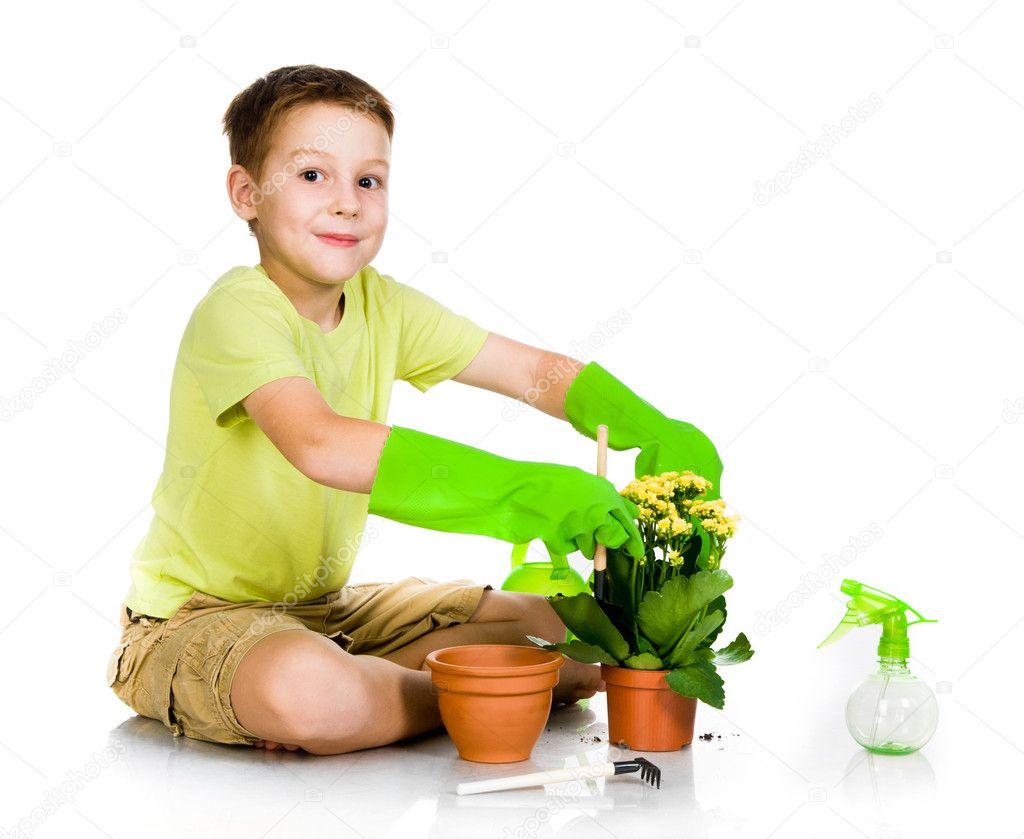 Cute boy transplanted the plant
