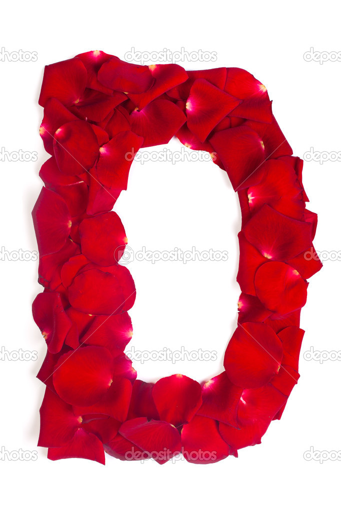 Letter D made from red petals rose on white