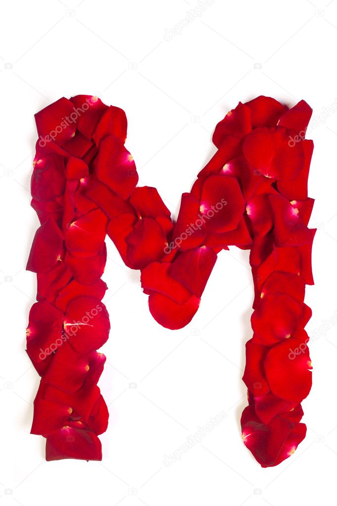Letter M made from red petals rose on white