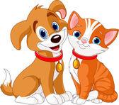Fotografie kočka a pes