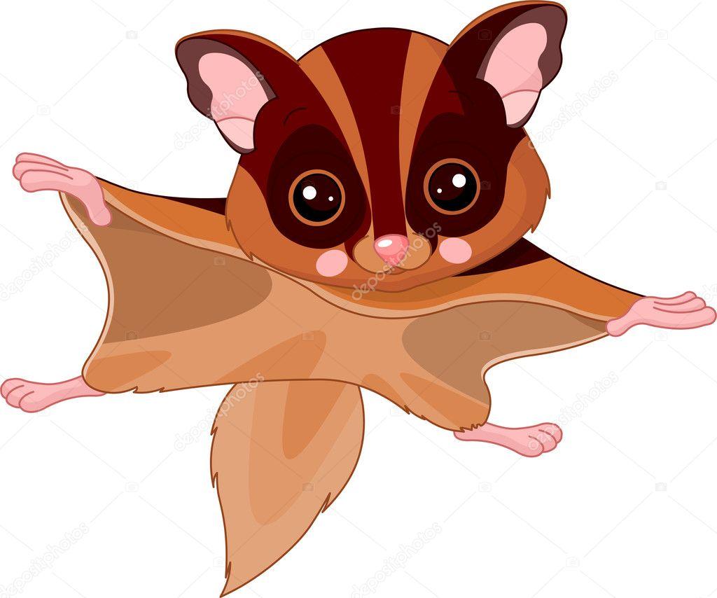 Fun zoo. Flying squirrel