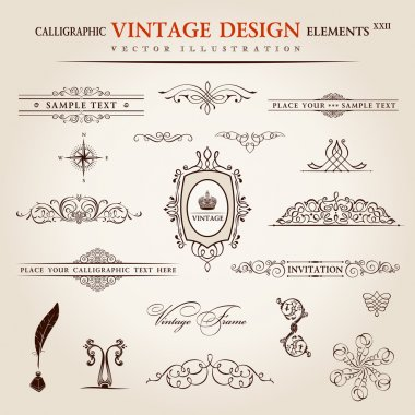 Vector set. Calligraphic vintage elements and page decoration pr