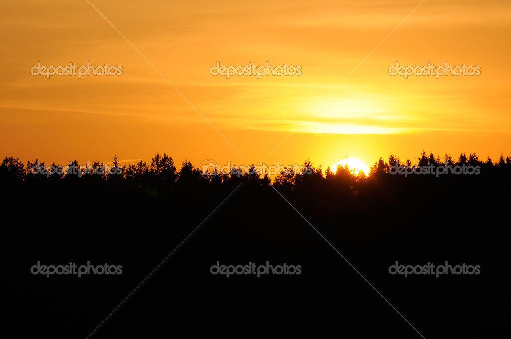 Beautiful Yellow Sunset over Black Forest