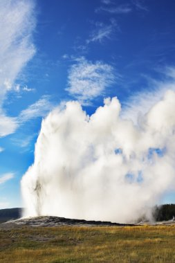 The most well-known of the world geyser in Yellowstone national park - Old Faithful. stock vector