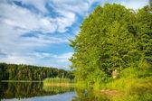 Fényképek Forest lake, nyári táj