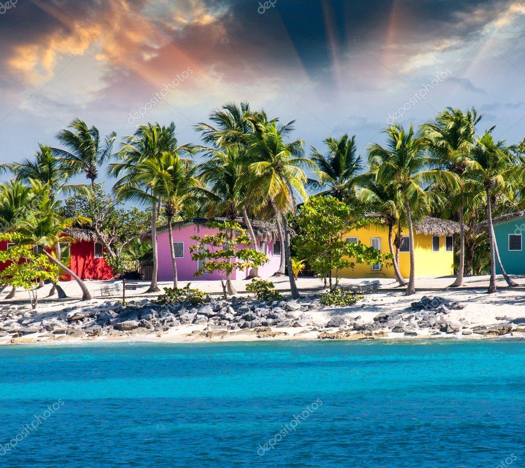 Strandhaus karibik  schönes Strandhaus mit Kokosnüssen Bäume — Stockfoto #11552377