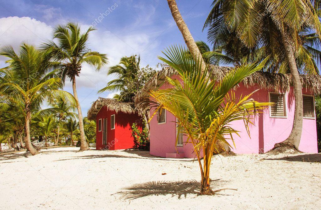 Strandhaus karibik holz  Karibik schönes Strandhaus mit Kokosnüssen Bäume — Stockfoto ...