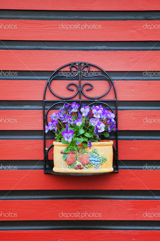 Flowers on red wall